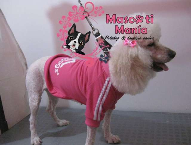 Mascotimania vende ropa para perro poleras adidog
