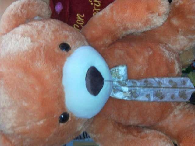 Peluche gigante oso gigante de importación oferta única!