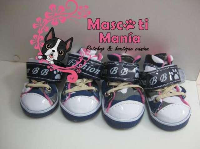 Zapatos importados para perro
