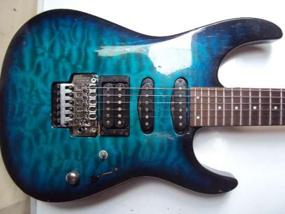Guitarra electrica fernandes