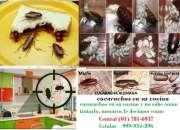 servicio de fumigacion para casas, exterminio de rata en san borja