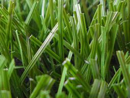 Grass sintetico peru