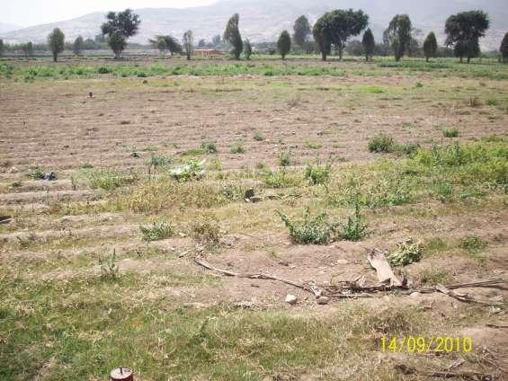 Se vende terreno en pampa grande pachacamac