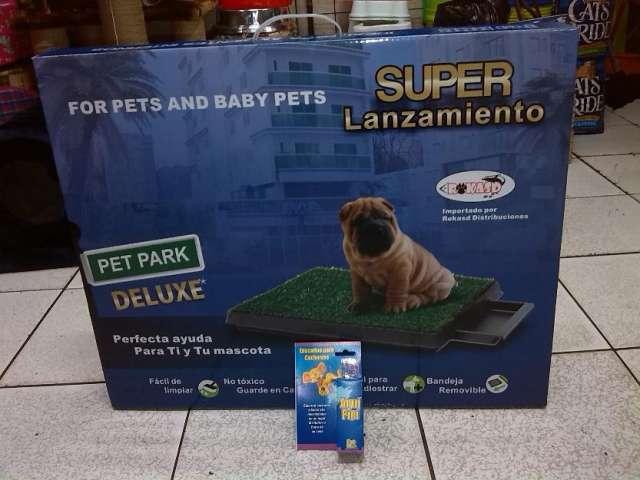 Baño ecoñogico para perros
