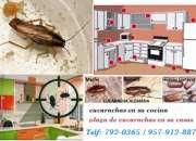 Fumigacion surquillo! telf. 957-912-887 fumigaciones surquillo, fumigaciones lima