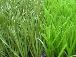 Grass sintetico lima